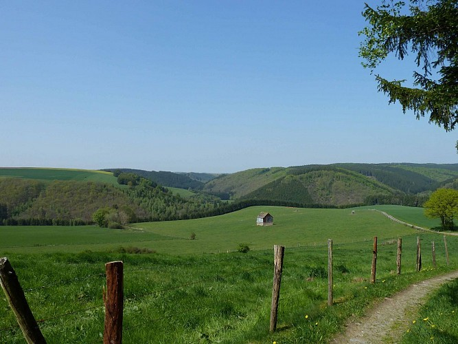 Vue sur la vallée du Kirelbaach