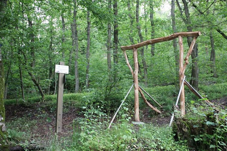 Kautenbach Camping
