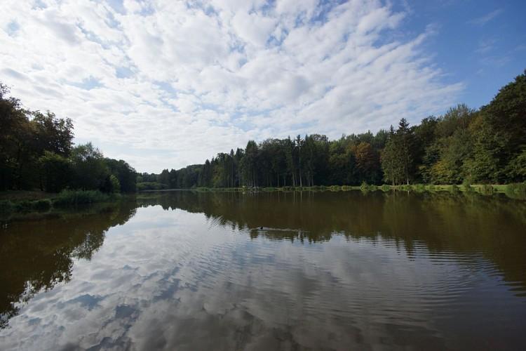 Les étangs Franchot