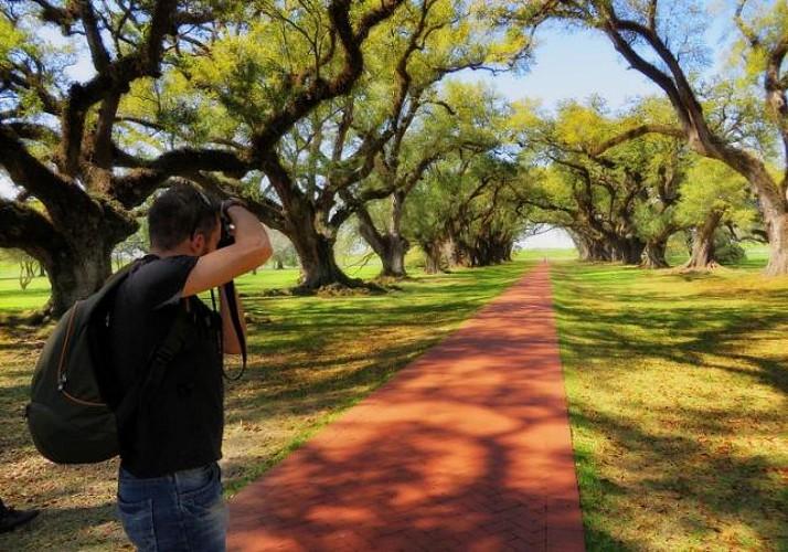 Tour 2 en 1 : Visite de la plantation Destrehan et promenade en bateau dans les Bayous