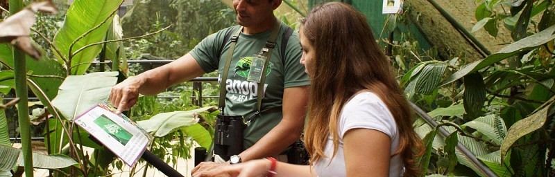 Nature Tour in The Heart of The Rainforest – Near Braulio Carrillo National Park