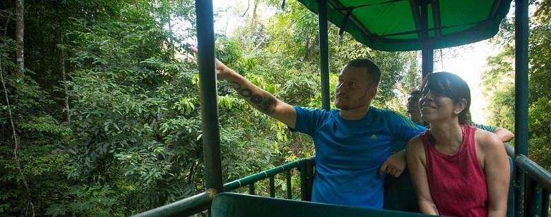 Traversée de la canopée en téléphérique et balade en forêt - Sur la côte Pacifique