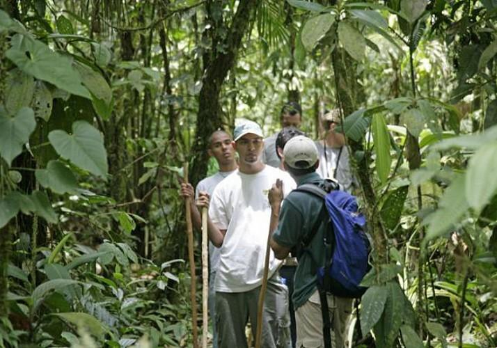 Trekking dans la forêt et baignade dans des piscines naturelles - A proximité du Parc national Braulio Carrillo