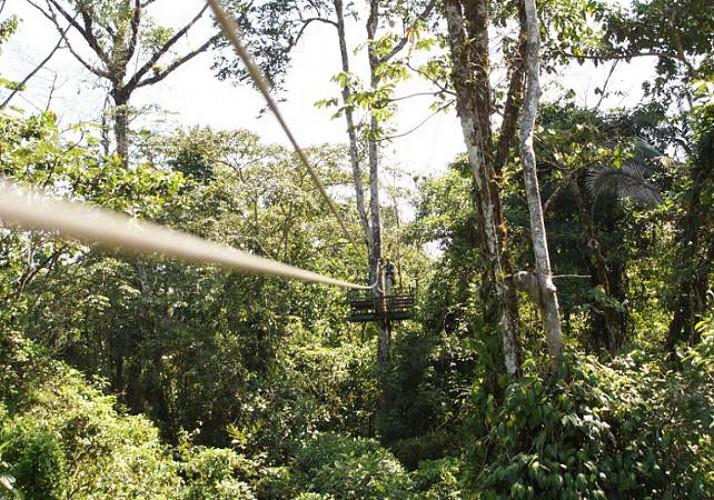 Descentes en tyrolienne et traversée de la canopée en téléphérique - Sur la côte Pacifique