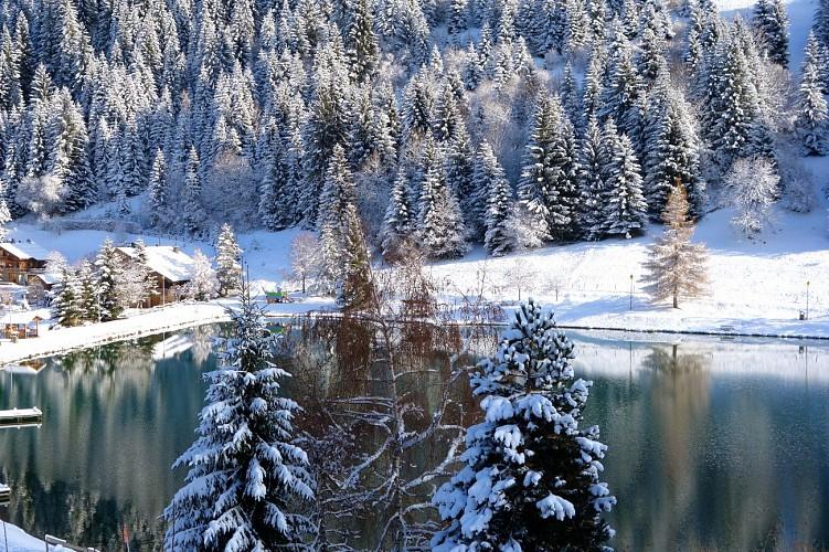 Lac de Vonnes