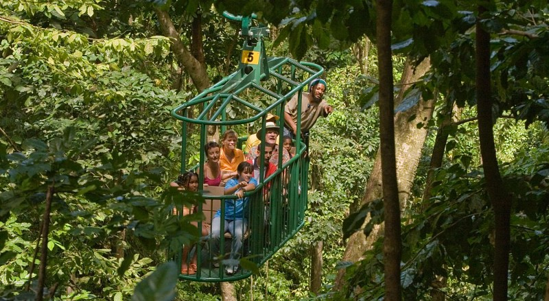 Travel Through the Canopy by Cable Car – In St. Lucia