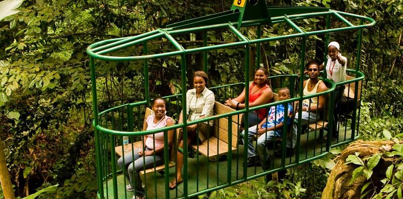 Traversée de la canopée en téléphérique - A Sainte-Lucie