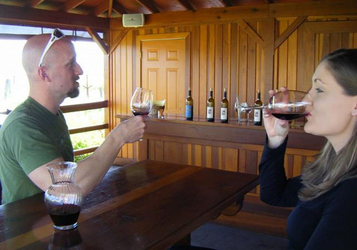 Half Day Trip to Sonoma Valley and Wine Tasting – Departing from San Francisco