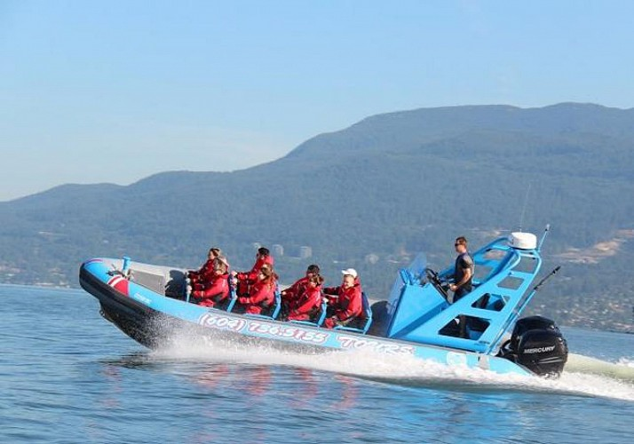 Tour en zodiac le long du littoral et observation d'une colonie de phoques à Vancouver