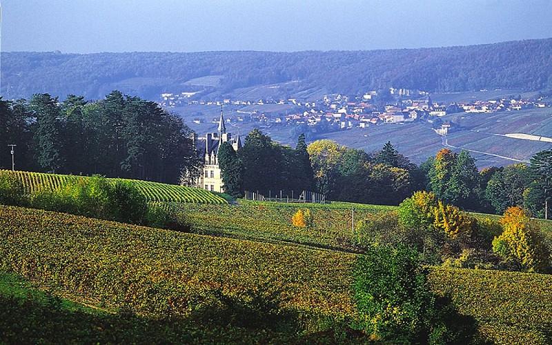 Point de vue sur le Château de Boursault, sur l'autre rive