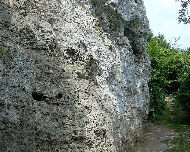 Site des Falloises Escalade - Vertus