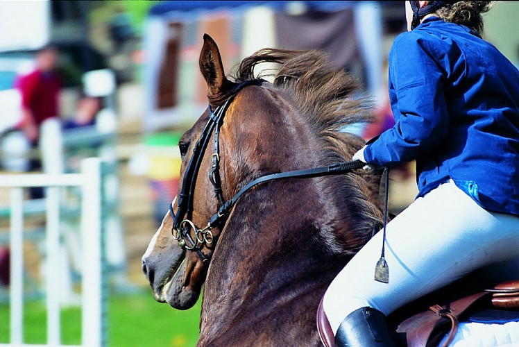 champagne 52 loisirs equestre competition phl6836.