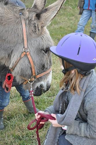 Champ'ânes - avec l'âne César - Outines