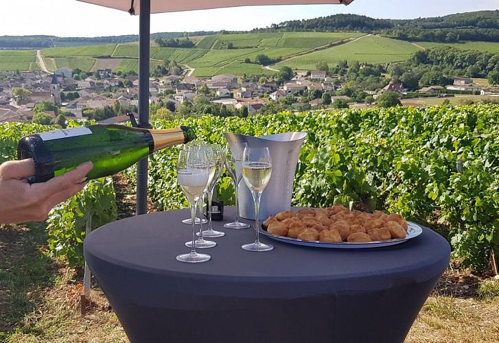 Millésime Champagne Philippe Fourrier.jpeg