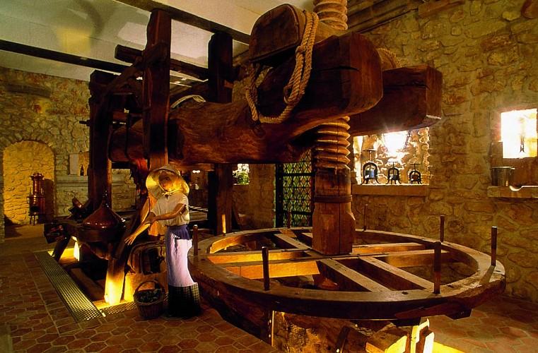 Musée champenois sur la vigne et le vin de Champagne