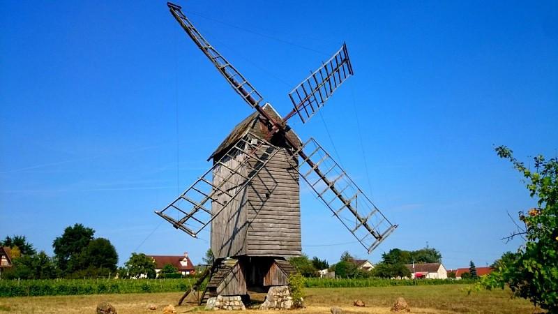 moulin oiseaux