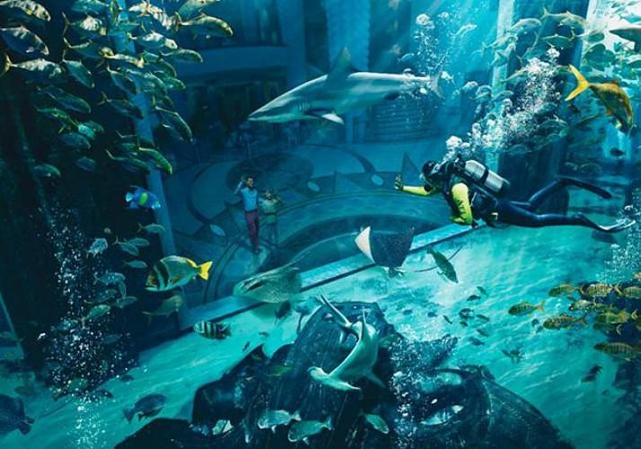 Billet The Lost Chambers - Aquarium de l'hôtel Atlantis à Dubaï