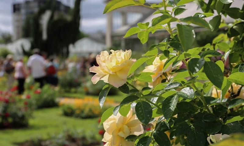 jardin des plantes - orleans 1S6A4349-1280x768