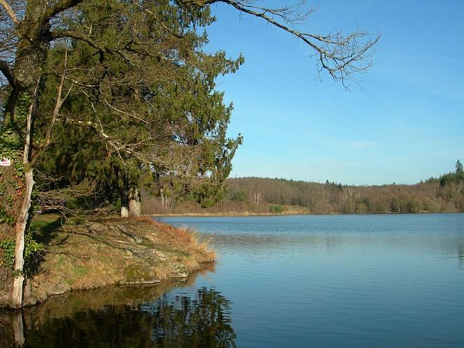 Etang de pêche 'Piquette' La Porcherie