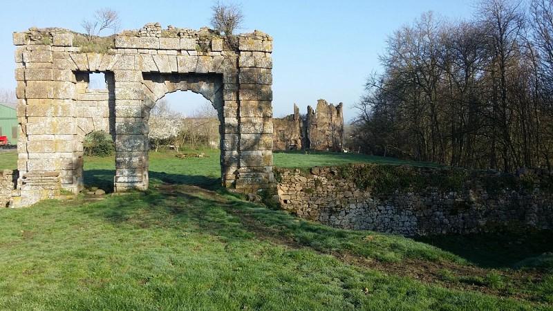 Ruines du Bois Frou