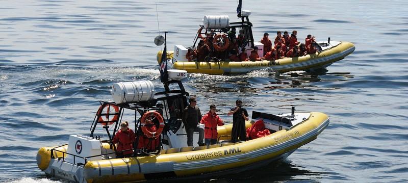 Croisière d'observation des baleines - Zodiac ou bateau - A Tadoussac & Baie-Sainte-Catherine