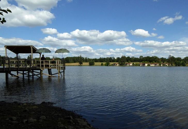 Angeln im Teich