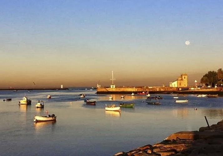 Visite à vélo de Porto autour de la gastronomie - Déjeuner inclus - Tour privé