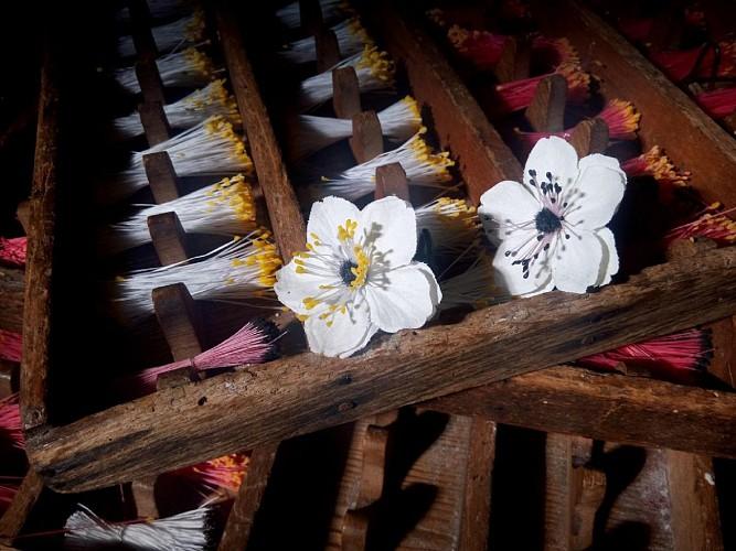 champagne 52 orges fleuristerie machine 1.