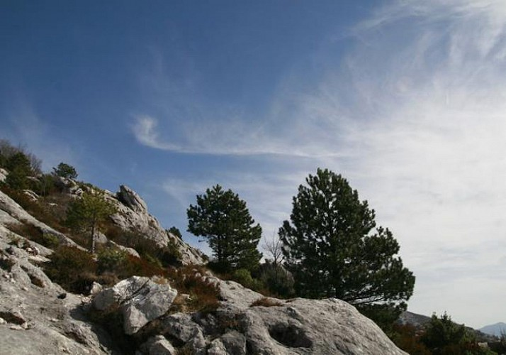 Mosor Mountain Hike – Departing from Split