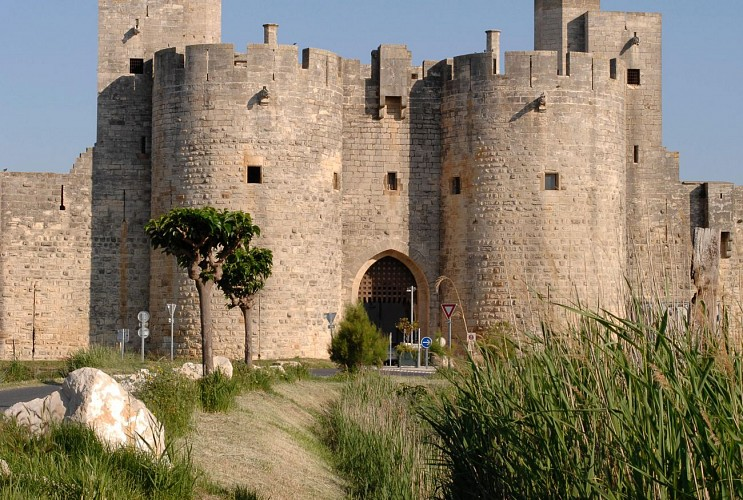 Billet - Tours et remparts d'Aigues-Mortes