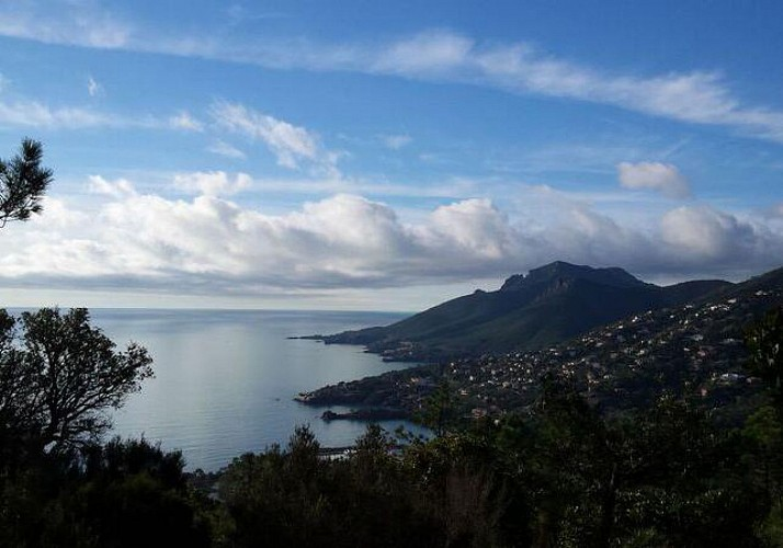 Randonnée dans le Massif de l'Estérel et apéritif local - départ à 10min de Cannes
