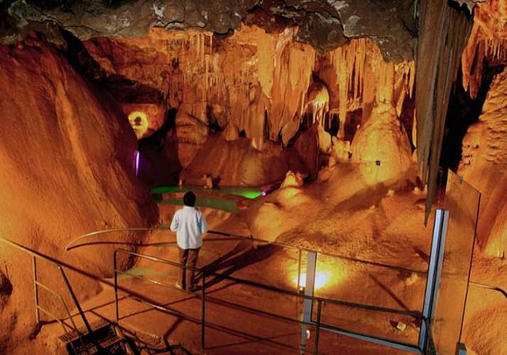 Visite de la grotte de Baume Obscure et promenade nocturne en forêt - à 1h10 de Cannes