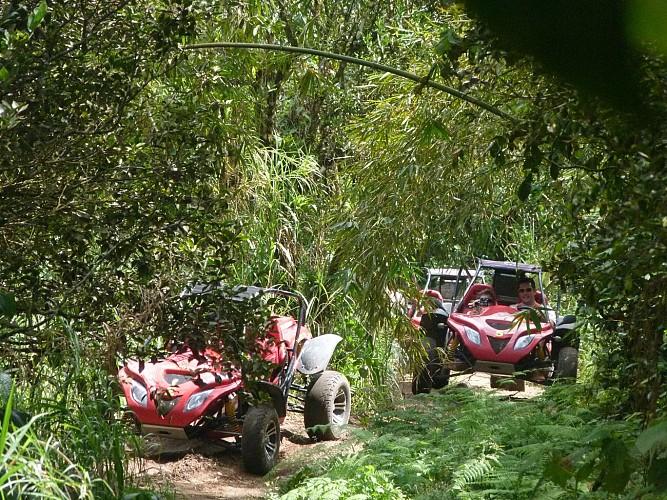 Randonnée en buggy sur la côte sud caraïbe de la Martinique - Au départ de Sainte-Anne