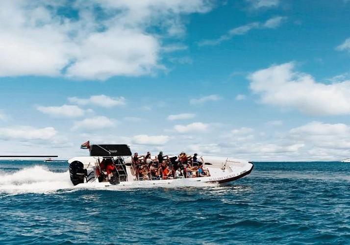 Croisière en Zodiac Xclusive à Dubai - Circuit Marina, Palm Jumeirah et Burj Al Arab (1h30)
