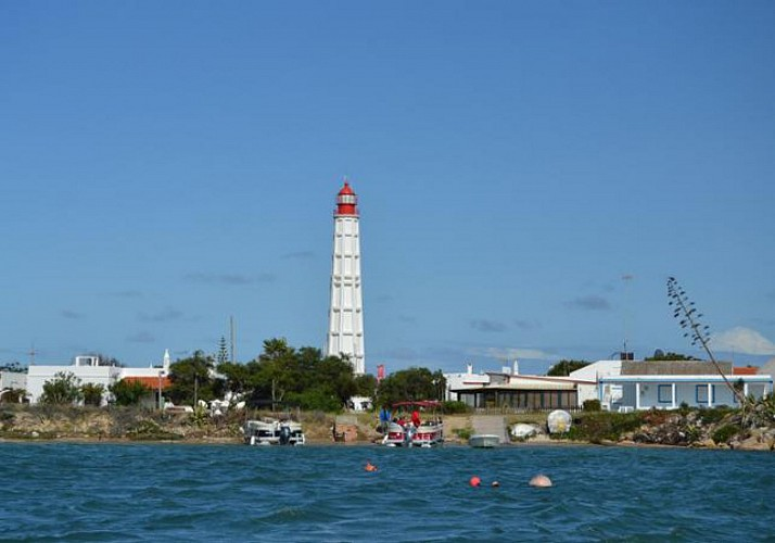 Croisère dans la Ria Formosa -  2 îles ou 4 îles - Faro