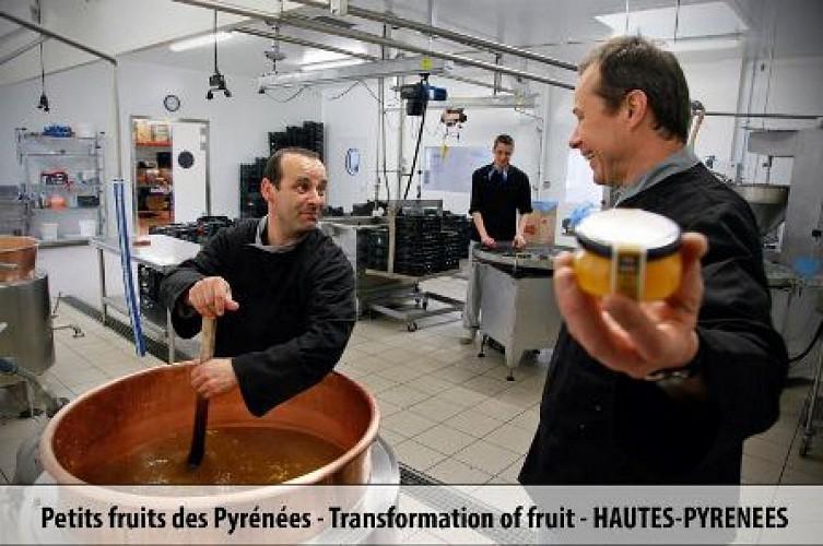 PETITS-FRUITS-A.DUQUESNEL2013 W