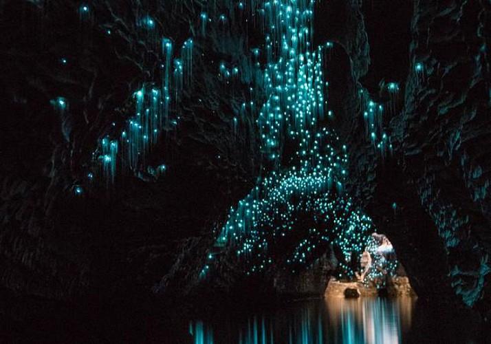 Billet Grottes de Waitomo