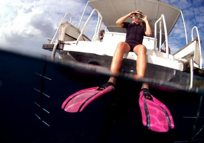 Plongée avec palmes, masque et tuba en Martinique - Au départ des Trois-Îlets