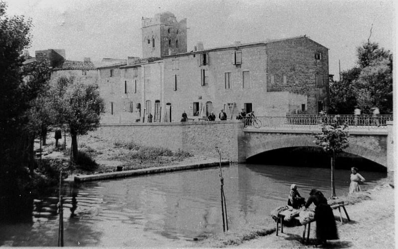 Le ruisseau de Torreilles