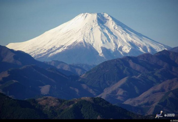 Bus Trip to Mount Fuji & Forest Walk – Departing from Tokyo