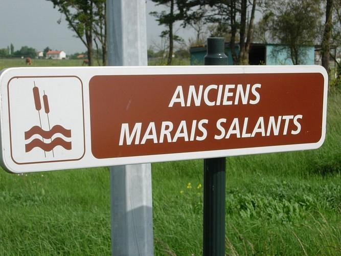 Les anciens marais salants