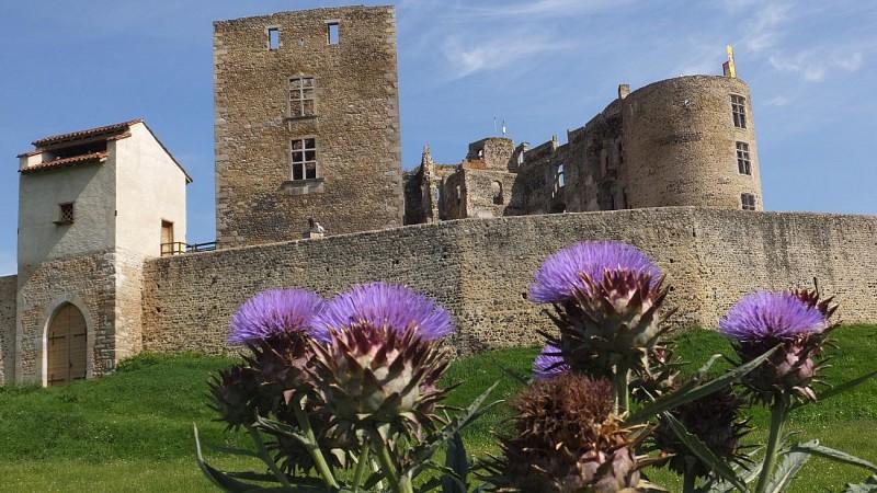 Chateau de Montrond Les Bains