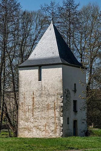 La tour de l'ancien château Saint-Rémy