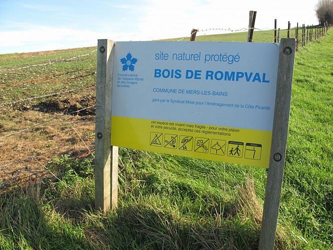 Le Bois de Rompval