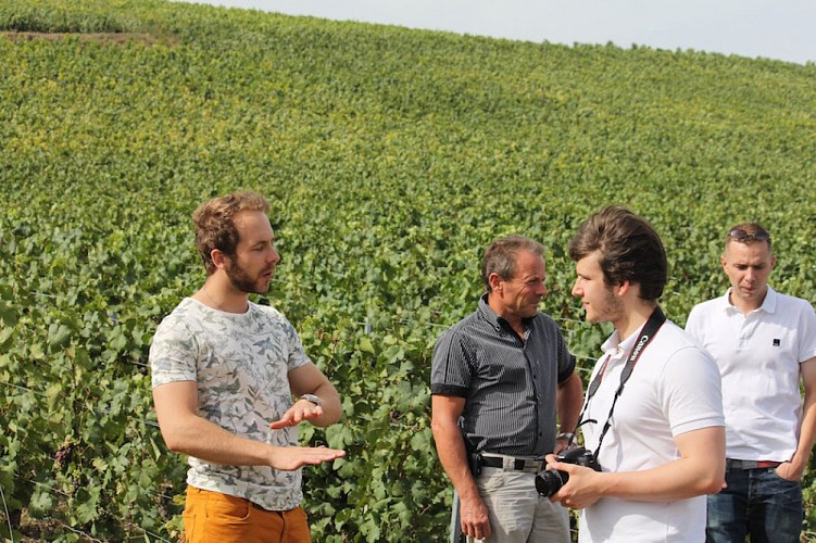 The Champagne Tour Co.