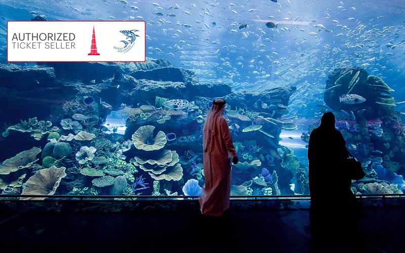 Dubai Aquarium & Underwater Zoo + Burj Khalifa Combo