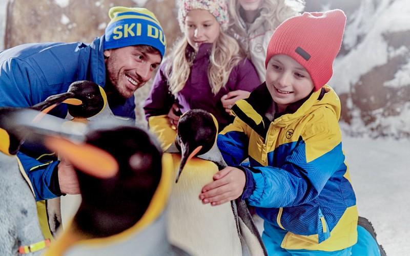 Ski Dubai Tickets: Snow Plus Pass