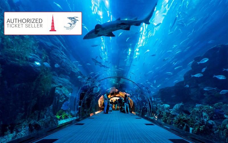 Burj Khalifa: Fast Track Access + Dubai Aquarium Combo
