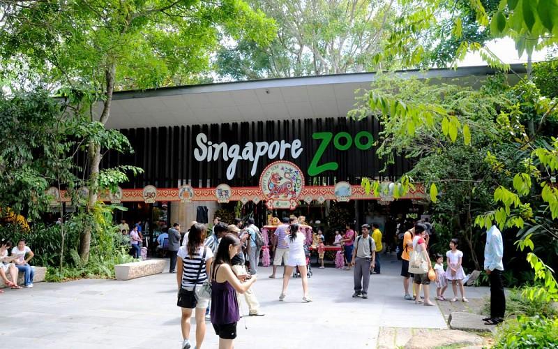 Super Saver Combo: Jurong Bird Park + Singapore Zoo