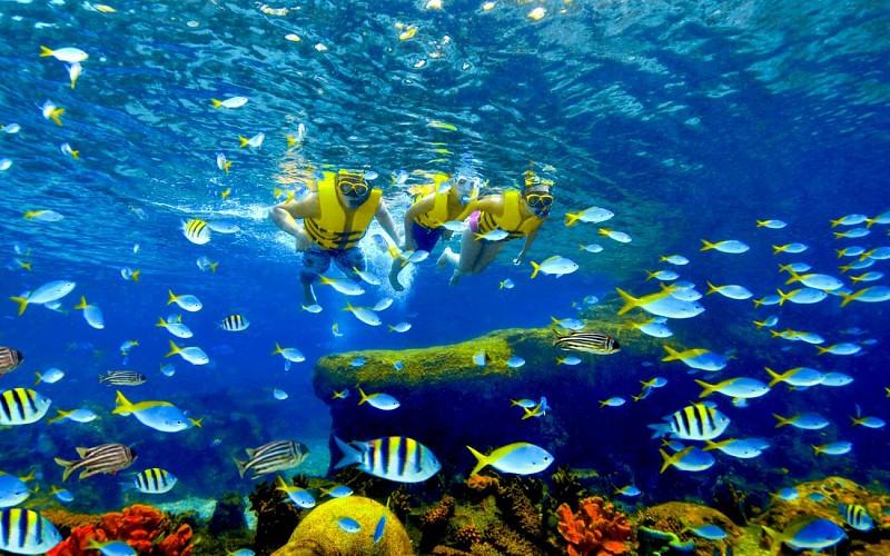Universal Studios Singapore + Adventure Cove Waterpark™